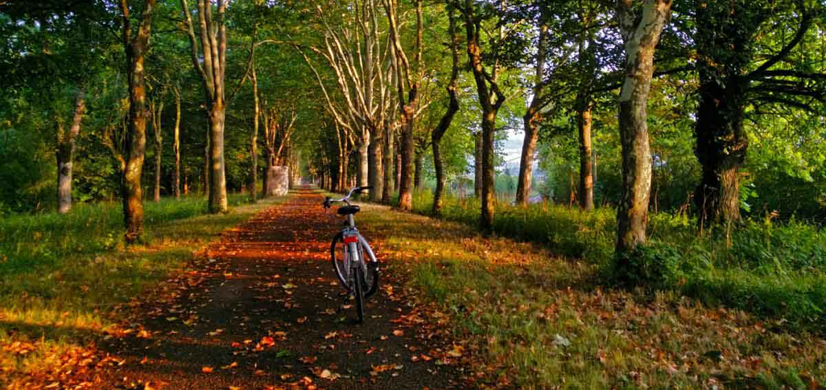 Cycling along the Burgundy canal